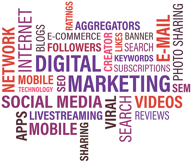 Case Study: Digital Marketing Agency